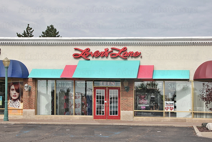 adult video store in michigan