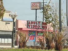 Adult Video Entertainment Center