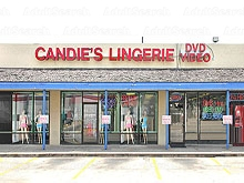 Candie's Lingerie DVD Video