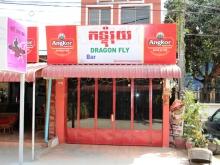 Dragonfly Bar