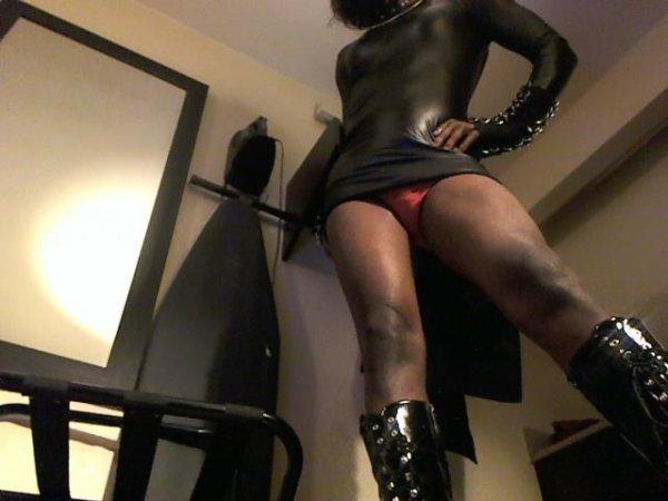 Sexy shemale bulge