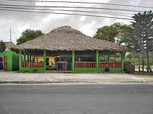 Coco Loco Disco