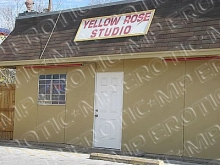 Yellow Rose Studio
