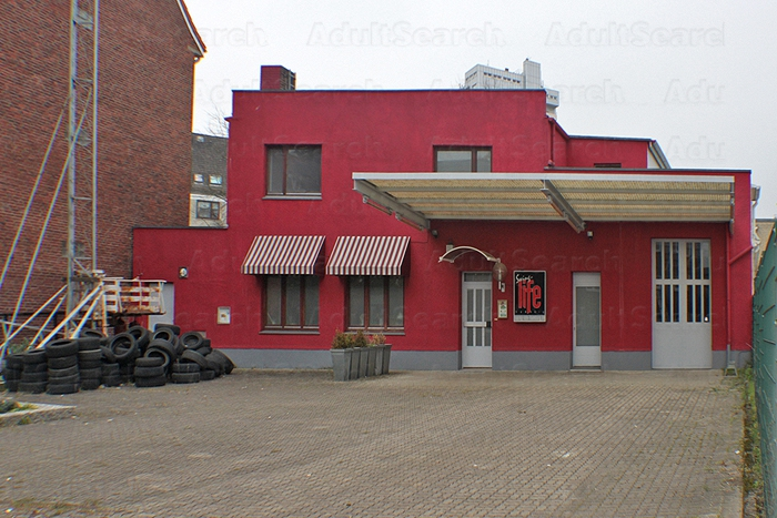 swinger club hamburg swingerclub hamburg