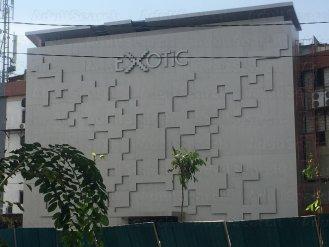 Exotic Disco