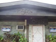 Frolics Bar & Grill