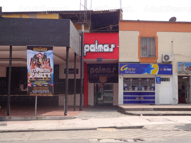 Babes in Palmas