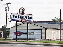 Klassy Cat